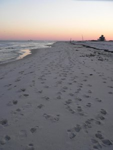 footprints and dust